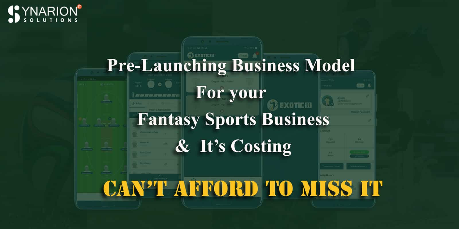 Pre-Launching Business Model for your Fantasy Sports Business and it's costing: Can't afford to miss it