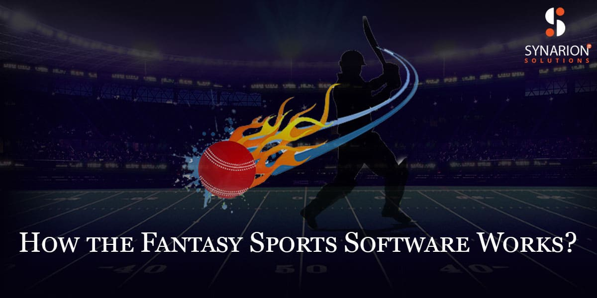 How-the-Fantasy-Sports-Software-Works